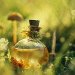 2056 Как сделать натуральный домашний шампунь своими руками