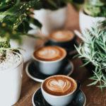 10937 Любишь кофе? Вот как сохранить улыбку белоснежной
