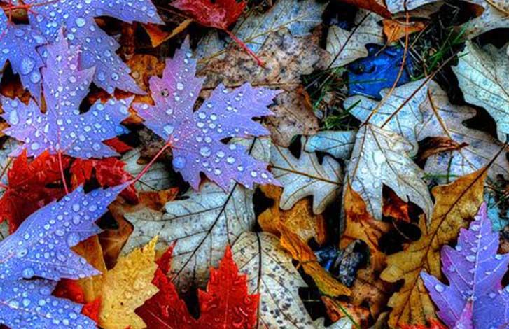 Что нужно коже осенью – рассказывает бьюти-эксперт