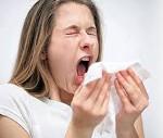 13169 Аллергия на пыль, что делать?