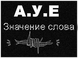 12866 Аое расшифровка что значит у молодежи – как переводится ауе с блатного по тюремному?