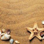 16174 Что брать с собой в отпуск, вещи на море список