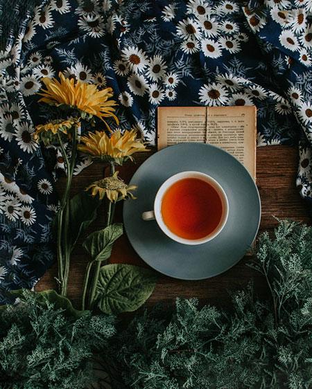 17029 Вкусно и полезно: что добавить в чай, чтобы укрепить иммунитет
