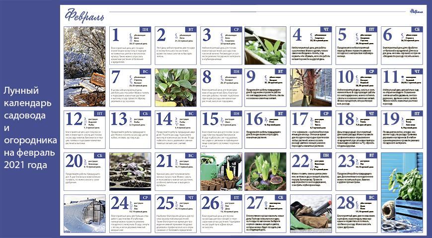 17376 Лунный календарь садовода и огородника на февраль 2022 года
