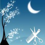 17358 Лунный календарь стрижек на январь 2022
